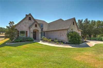 Parker County, Tarrant County, Hood County, Wise County Single Family Home For Sale: 2024 Green Wing Drive