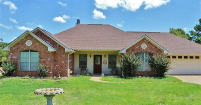 Lindale Single Family Home For Sale: 16236 County Road 4197
