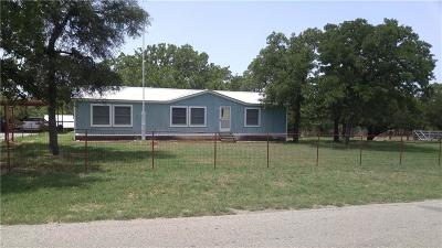Palo Pinto County Single Family Home For Sale: 210 Southwind Road