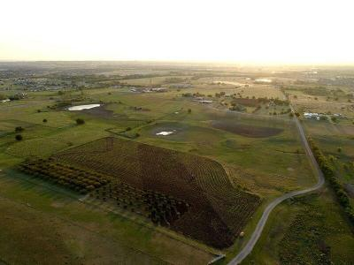 Fort Worth Farm & Ranch For Sale: 8621 Wagley Robertson Road
