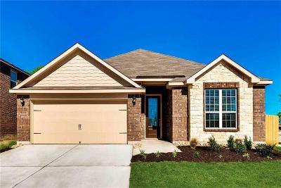 Denton Single Family Home For Sale: 1004 Summer Stream Road