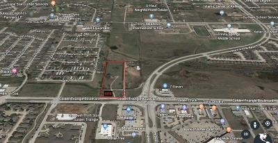 Commercial Lots & Land For Sale: 4315 Golden Triangle Boulevard
