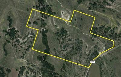 Comanche Farm & Ranch For Sale: 10331 County Road 1476