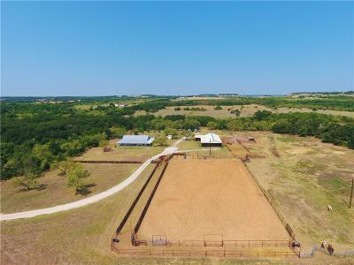 Wise County Farm & Ranch For Sale: 168 Private Road 3567