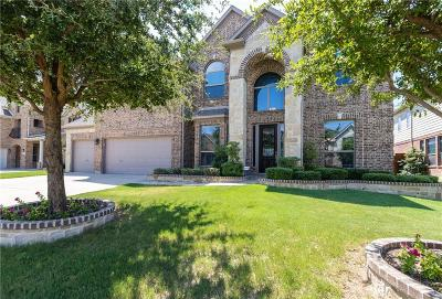 Grand Prairie Single Family Home For Sale: 3211 Paseo