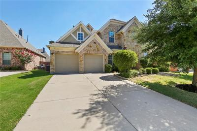 Frisco Single Family Home For Sale: 9591 Lance Drive