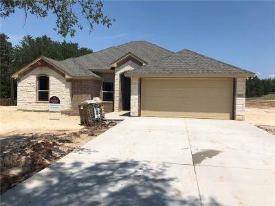Granbury Single Family Home For Sale: 3907 Del Rio Court