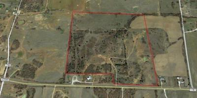 Wise County Farm & Ranch For Sale: Tbd Fm 2265