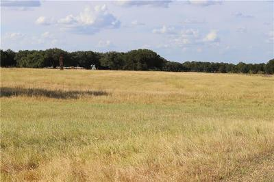 Parker County, Hood County, Palo Pinto County, Wise County Farm & Ranch For Sale: 2141 Natty Flat Road