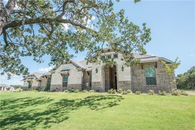 Azle Single Family Home For Sale: 1301 Craft Farms Circle