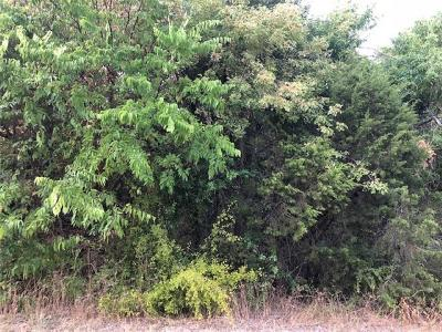 Granbury Residential Lots & Land For Sale: 1131 Indian Drive