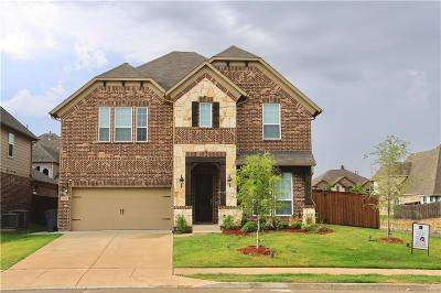 Denton County Single Family Home For Sale: 2600 Hammock Lake Drive