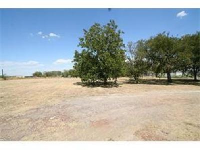Little Elm Commercial Lots & Land For Sale: 1901 Oak Grove Parkway