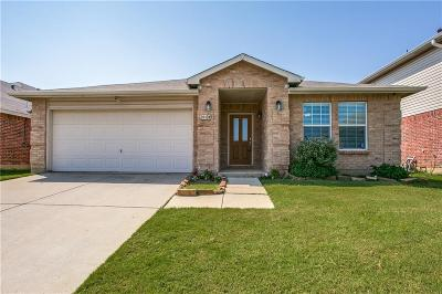 Denton Single Family Home For Sale: 2904 Desert Drive