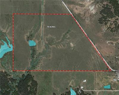 Parker County, Hood County, Palo Pinto County, Wise County Farm & Ranch For Sale: 001 North Whitt Road
