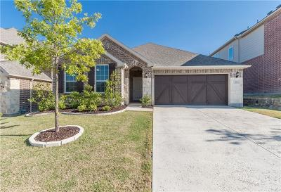 Lewisville Single Family Home For Sale: 211 Cielo Azure Lane