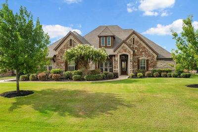 Fort Worth Single Family Home For Sale: 1201 Durango Springs Drive