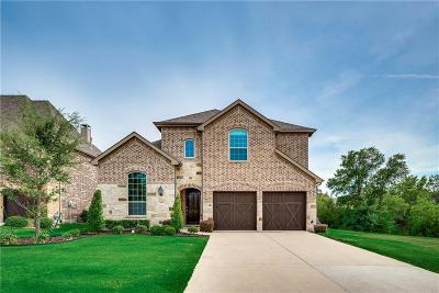 Plano Single Family Home For Sale: 2440 Verbick Lane