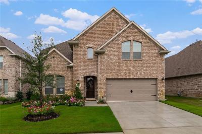Collin County Single Family Home For Sale: 2109 Triton Drive