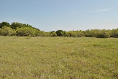 Hood County Farm & Ranch For Sale: 3601 Tin Top Highway