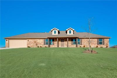 Springtown Single Family Home For Sale: 224 Springwood Ranch Loop