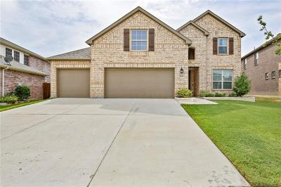 Denton County Single Family Home For Sale: 2919 Morning Star Drive
