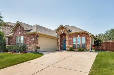 North Richland Hills Single Family Home For Sale: 6904 Dream Dust Drive