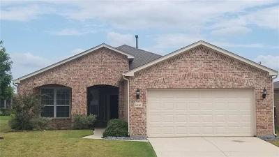 Frisco Single Family Home For Sale: 6040 Eagle Point Lane