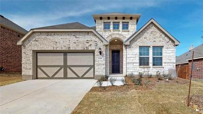 Denton Single Family Home For Sale: 6508 Meandering Creek Drive
