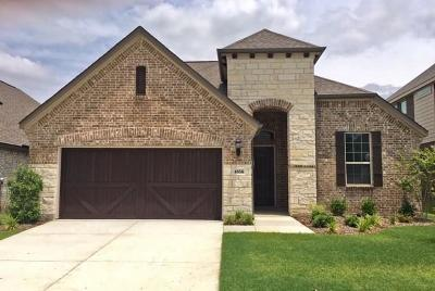 Carrollton Single Family Home For Sale: 4856 Timber Trail