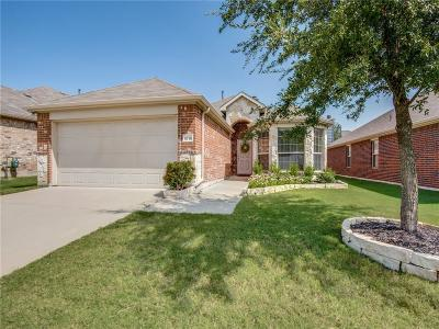 Mckinney Single Family Home For Sale: 9716 Sleepy Hollow Drive