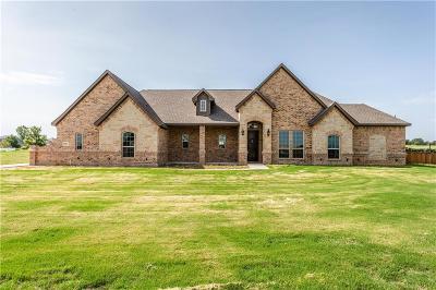 Springtown Single Family Home For Sale: 1037 Jesse James