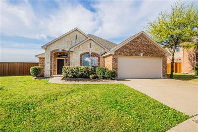 Grand Prairie Single Family Home For Sale: 2747 Ferdinand