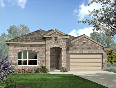 Fort Worth Single Family Home For Sale: 10120 Blueside Trail