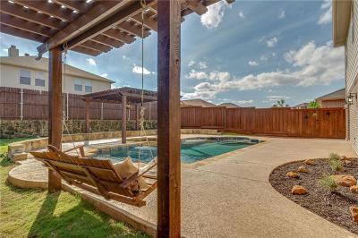 Little Elm Single Family Home For Sale: 1412 Whitewater Drive