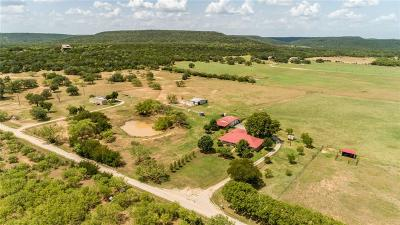 Palo Pinto County Single Family Home For Sale: 434 Thornton Lane