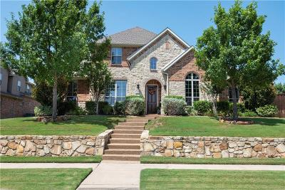 Allen Single Family Home For Sale: 1203 Shallowater Drive