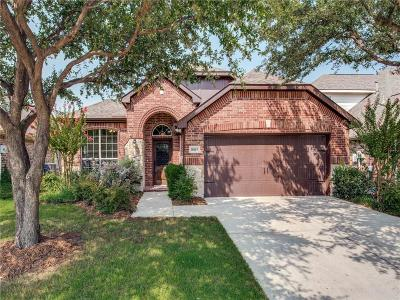 Frisco Single Family Home Active Option Contract: 10143 Slick Rock Trail