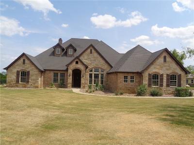Aledo Single Family Home For Sale: 173 Rancho Vista Drive
