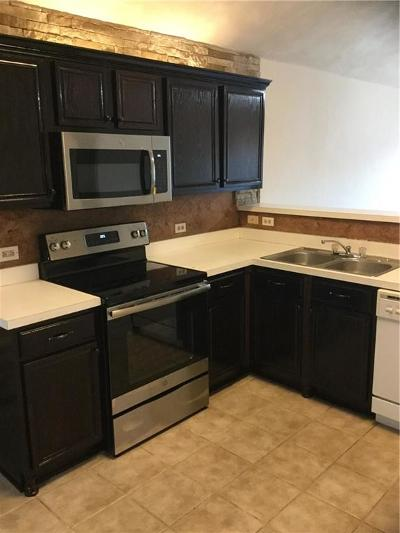 Fort Worth Residential Lease For Lease: 3128 Spotted Owl Drive