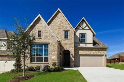 Flower Mound Single Family Home For Sale: 5163 High Ridge Trail