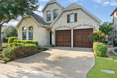 Plano Single Family Home For Sale: 4821 Pyramid Drive