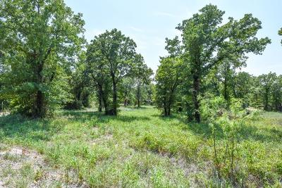 Stephenville Residential Lots & Land For Sale: 1150 Walking Horse Drive