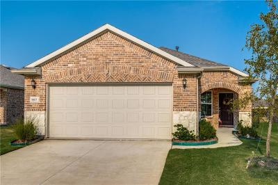 Frisco Single Family Home For Sale: 6677 Trout Lane