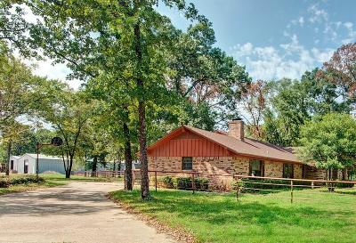 Grand Saline Single Family Home For Sale: 1100 State Hwy 110