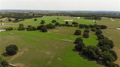 Granbury Farm & Ranch For Sale: 1003 Hood Court