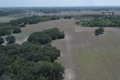 Coolidge, Mexia, Mount Calm Farm & Ranch For Sale: 422 Lcr 436