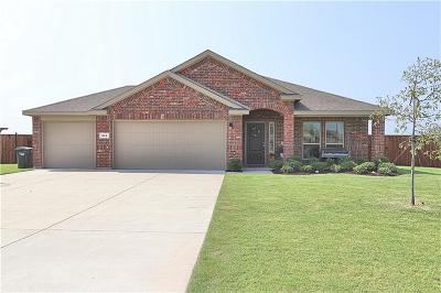 Nevada Single Family Home For Sale: 344 Amber Lane