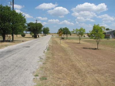 Denton County Residential Lots & Land For Sale: Lot5 Chisum Road