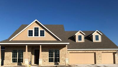 Rockwall Single Family Home For Sale: 4206 Stable Glen Drive